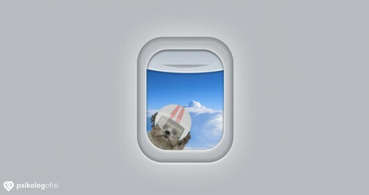 Uçak Fobisini 9 Adımda Yenmenin Yolu